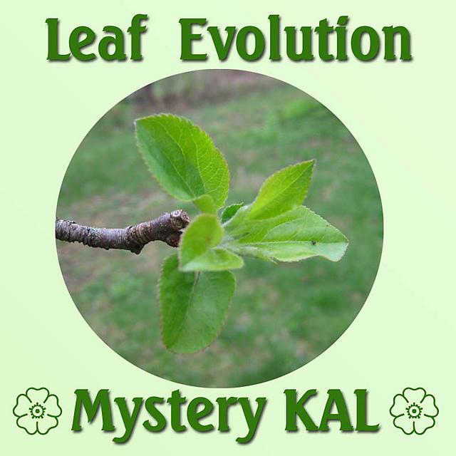 Leaf evolution